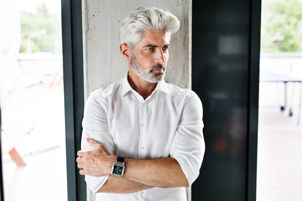 Silver Fox Gray Hair